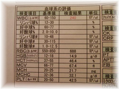 CIMG3189.JPG