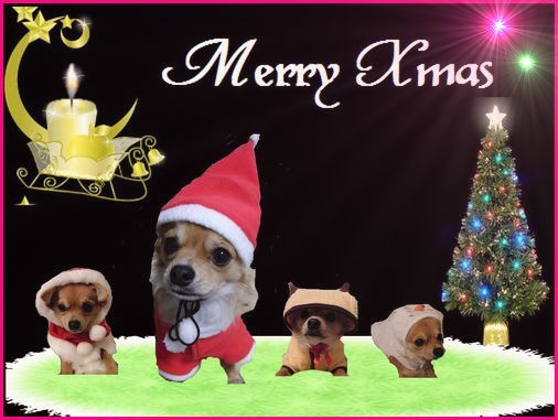 クリスマスカード5ほし.jpg