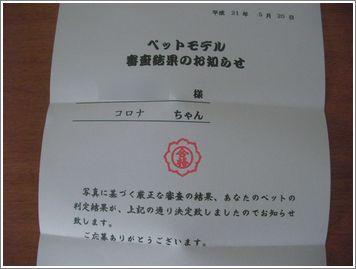 SANY0643.JPG