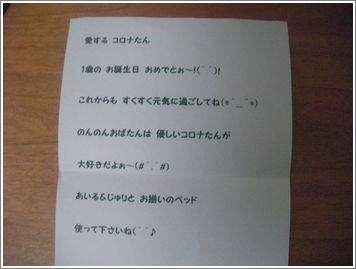 SANY110627.JPG