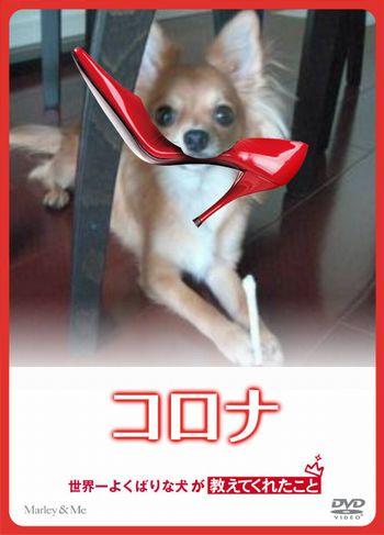 narikiru_11252669575_8322.jpg